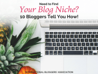 Are you having a hard time figuring out your blog niche? Do you even know what blog niche means? If you are a serious blogger you may want to find out now!