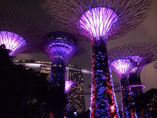 The OCBC Skyway at the Supertree Grove lets you get an up-close look at the technical marvels of the Gardens' futuristic Supertrees. Be sure and visit there while in Singapore!