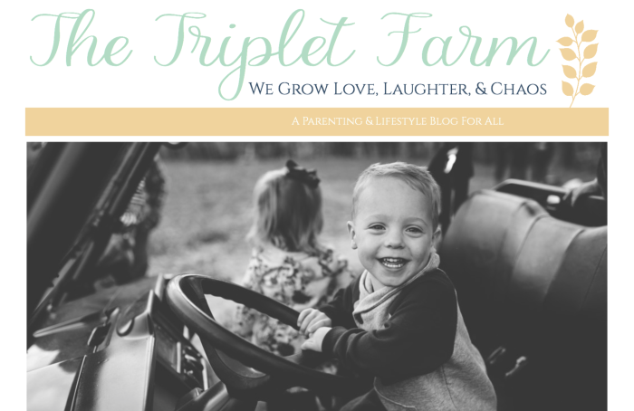 Today we have a lovely member interview from Angela of The Triplet Farm. You will enjoy sharing in her joys and chaos as she blogs about being a mother of triplets.