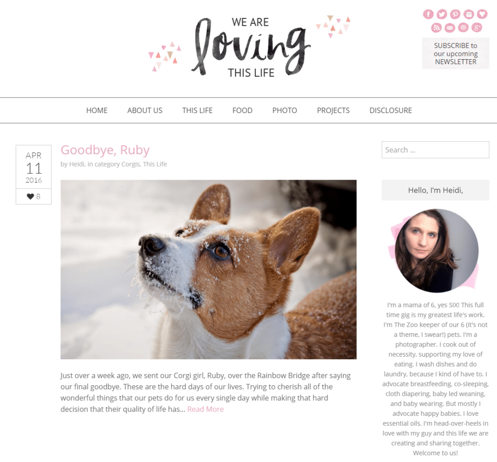 We Are Loving This Life --- Wowza! Six kids and five pets??? Heidi Smith from We Are Loving This Life may just be our latest superwoman to join the IBA! Learn more about her blog and busy mom life here. #momblogger