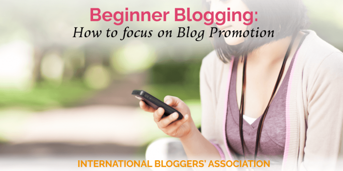 Beginner Blogging: How to focus on Blog Promotion