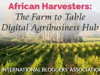 Meet IBA member Serah Odende of African Harvesters. She blogs about all things agricultural in Africa. You will love her farm-to-table blog!